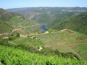 The Ribeira Sacra - An unsurpassable landscape
