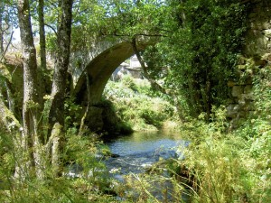 The Medieval bridge of Pedroso