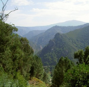 The valley of the river Sil