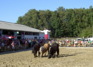 Santi Serra Camps - The Horse Whisperer